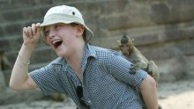 A past tourist mingles with the monkeys in Lopburi, Thailand