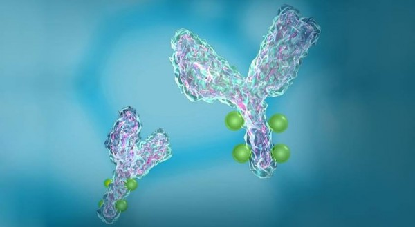 Antibody–drug conjugates (ADCs) is working its way through clinical trials.