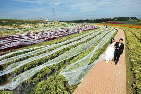 China's entry to Guinness World Records: Longest Wedding Gown