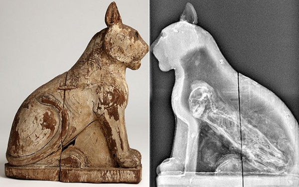 Egypt Animal Mummies