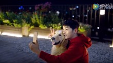 Chinese smartphone giant Vivo dropped its contract with Korean superstar Song Joong Ki due to