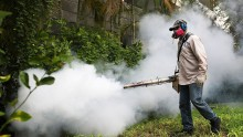 Mosquito control inspector uses a Golden Eagle blower to spray pesticide to kill mosquitos.