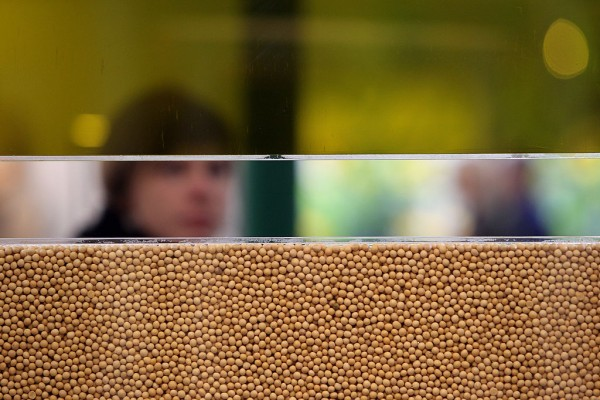 A woman walks past displayed soy beans and soy oil during the world organic trade fair BioFach 2011on February 16, 2011 in Nuremberg, Germany.
